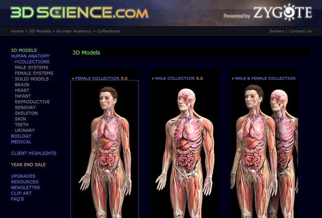 Google Body and Biodigital Human | Internet with a Brain