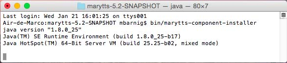 Mary TTS Component Installer