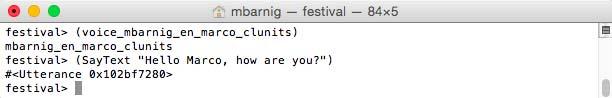 Festival : SayText