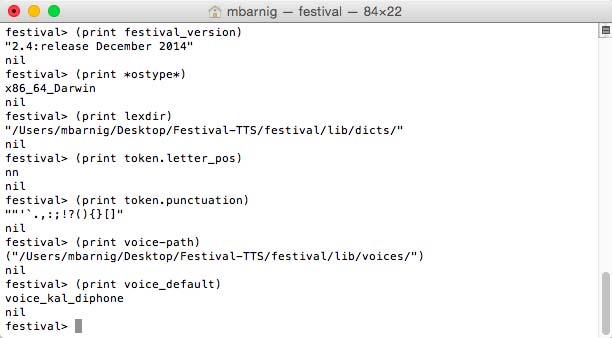 Festival Variables