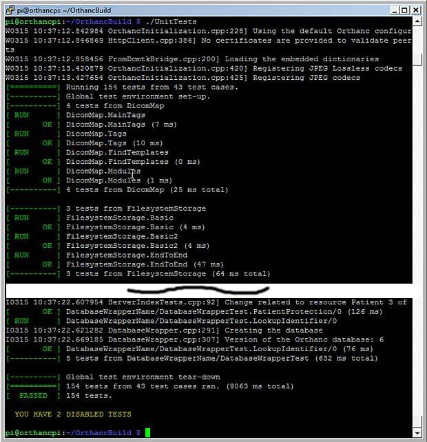 Orthanc Raspberry Pi | Internet with a Brain