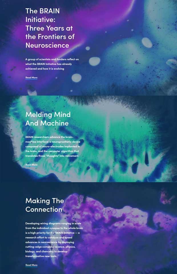 Brain Iniative Website