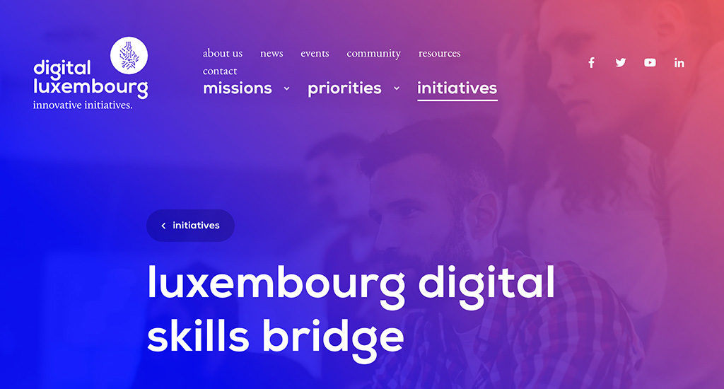 Digital Skills Bridge